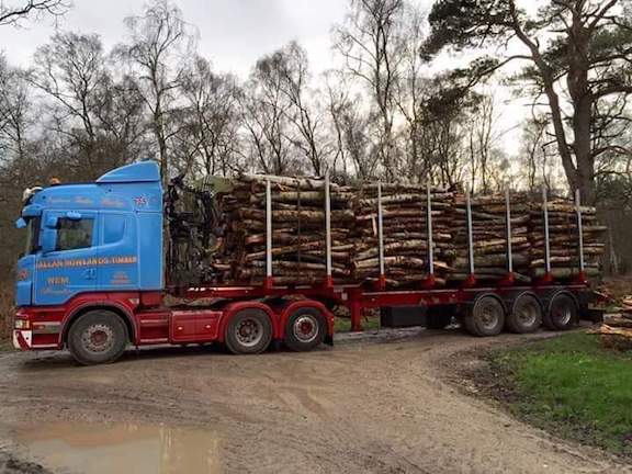 Fresh timber delivered to the yard